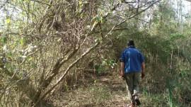 Caminatas, senderos en la isla